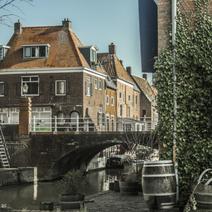 Niderlandy